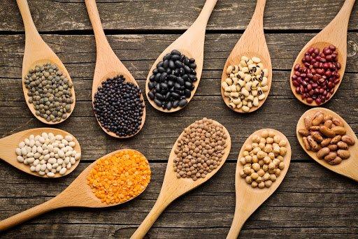 البذور الزراعية التركية تصل 80 بلداً حول العالم
